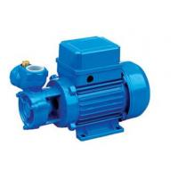 Wholesale Electrophoresis Anti Rust Treatment Electric Water Pump 0.5HP / 0.37KW from china suppliers