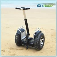 Wholesale Self Balancing Off Road Segway Scooter 4000w 19 Inch Or 21 Inch from china suppliers
