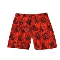 Wholesale Mens Printed Board Shorts 02 from china suppliers