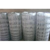 Wholesale Galvanized Cattle Fence from china suppliers