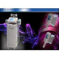 Wholesale 5 Handles Cryolipolysis Slimming Machine , Fat Freezing Machine For Spa from china suppliers