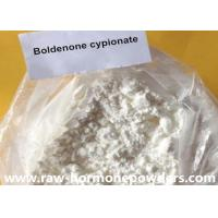 Wholesale 99% Purity Boldenone Steroids , Anabolic Androgenic Steroids White / Yellow Color from china suppliers