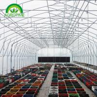 Buy cheap 2019 poly film thickness butterfly greenhouse grow tent for vegetables from wholesalers