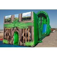 Wholesale Kids Zip Line, Inflatable Tarzan Zip Line For Grassland Amusement Sports from china suppliers