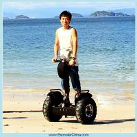 Wholesale Two wheel self balancing electric scooter 1000w cheap from china suppliers