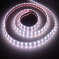 Wholesale IP65 waterproof 5050 Flexible Led Strip Lights for decorating supermarket, retail shop from china suppliers
