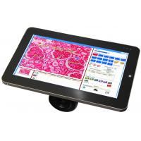 "Wholesale HD 5.0MP 10.1"" LCD Screen Windows 7 LCD Digital Camera / Scopepad / Tablet from china suppliers"