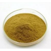Wholesale Plant Extracts Powder / Male Enhancer Steroids Damiana Turnera Diffusa For Health Care Product from china suppliers