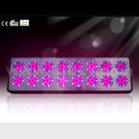 Wholesale Apollo LED Grow Light No. 16 from china suppliers