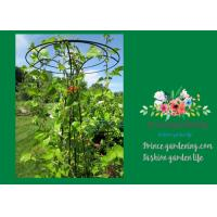 Wholesale Flower Supports Plant Stakes , Tall Plant Support For Climbing Plants from china suppliers