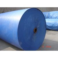 Wholesale Green/Green Plastic Tarpaulin ,waterproof PE tarpaulin,Green PE tarpaulin in roll from china suppliers