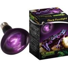 Buy cheap Super Reptile Repti Black Moonlight from wholesalers
