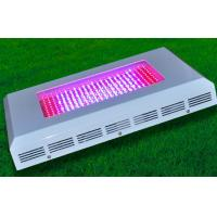 Wholesale RGB High Brightness 120 Watt LED Grow Lights 50 Hz Aluminum Alloy from china suppliers
