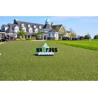 Wholesale 12 mm High Density Artificial Grass For Golf Putting Green Cricket  Turf Mat from china suppliers
