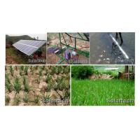 Wholesale Agriculture Irrigation from china suppliers