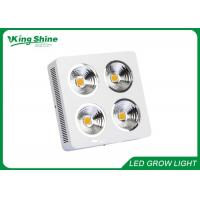 Wholesale Professional Cree Cob Hydroponic Led Grow Lights High Times With HPS Lamp from china suppliers
