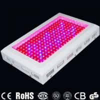 Wholesale High Power 200W 440 * 340 * 70mm LED Hydroponics Indoor Plant Grow Lighting For Garden from china suppliers