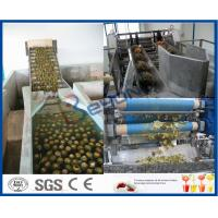 Wholesale Pineapple Processing Juice Factory Machinery With Fruit Juice Packaging Machine from china suppliers