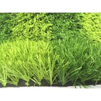 Wholesale 50mm Backyard Artificial Grass For School Playground / Big Stadium PE PP from china suppliers
