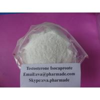 Wholesale Buy Testosterone Isocaproate Steroid Powder test isocaptoate Buy Test Enanthate from china suppliers