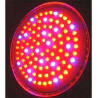 Wholesale High power 50W-3GB red, blue led hydroponic plant growing lights for indoor plants from china suppliers