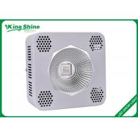 Wholesale Commercial 200 Watt Full Spectrum Led Grow Lights High Times Led Grow Lamp from china suppliers