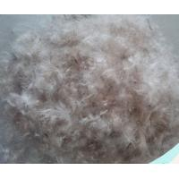 Wholesale Washed Quilt Filling Material 50% Grey Duck Down 50% Grey Duck Feather for Bedding Set from china suppliers
