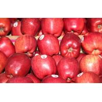 Wholesale Red Delicious Organic Fuji Apple With Smooth Surface Improving Immunity from china suppliers