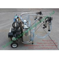 Wholesale Automated Gasoline Engine Mobile Milking Machine Dairy Milking Equipment from china suppliers