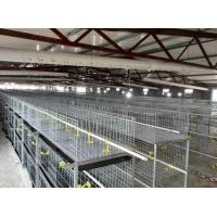 Buy cheap Wire Mesh Baby Chicken Cage for Sale from wholesalers