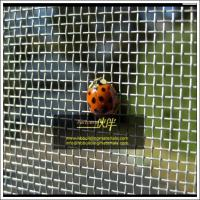 Buy cheap Aluminum window screens,insect screen for doors and windows,Factory direct supply from wholesalers