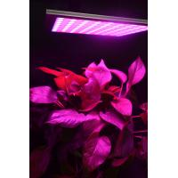 Wholesale Energy Efficiency Hydroponic Led Grow Lights For Indoor Gardening Alluminum Material from china suppliers