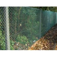 Quality China Supplier,PVC Coated after Galvanized Chain Link Fencing for garden fence,MIC for sale