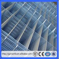 Quality Guangzhou pvc/ stainless steel/ galvanized welded wire mesh for building(Guangzhou Factory) for sale