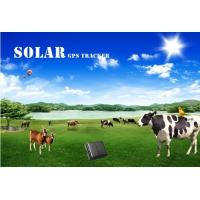 Wholesale Solar gps tracker for big dog reachfar V26 mini gps tracker suitable for cattle tracking from china suppliers