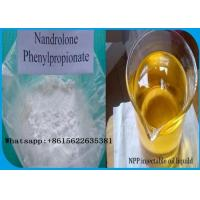 Wholesale 62-90-8 Injectable Nandrolone Steroid Nandrolone Phenylpropionate NPP for Cycle Cutting from china suppliers