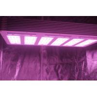 Buy cheap 1.5g/watt 630W  LED Growing Light  with full spectrum For Plants Growth from wholesalers