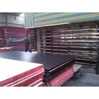 Wholesale Eco-friendly Shuttering Concrete Black Film Faced Plywood , Film Faced Plywood With Wbp Glue from china suppliers