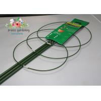 Wholesale Steel with PE Coated Tomato Spiral Garden Plant Support 120cm length from china suppliers
