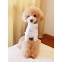 Wholesale Warm Comfortable White 100% Cotton Personalised Dog Hoodies from china suppliers