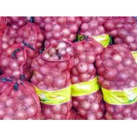 Wholesale No Irregular Shape Purple Fresh Onion 30mm - 50mm , Wonderful Flavors For Cooking from china suppliers