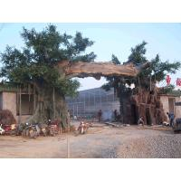 Quality mountain/park beauty spot landsaping artificial banyan tree for sale