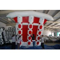 Wholesale Commercial Grade Durable 12 Person PVC Inflatable Flying Fish Boat from china suppliers