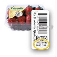 Wholesale Self Adhesive Food Labels from china suppliers