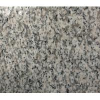 Wholesale G623 Granite Kitchen tables / Island / worktop / counter for Restaurant , Hotel from china suppliers