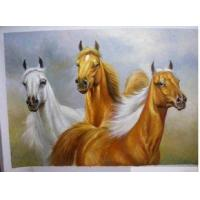 Wholesale Oil Painting Animal Horse (639) from china suppliers