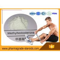 Wholesale CAS 65-04-3 Testosterone Anabolic Steroid Methyltestosterone 17-Alpha-Methyl-Testosterone from china suppliers