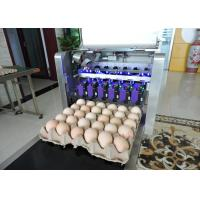 China Safety Egg Inkjet Marking Machine With Free Upgrade And Technical Guidance on sale