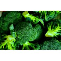 Wholesale High Carotenoids Green Organic Frozen Broccoli Preventing Prostate Cancer from china suppliers