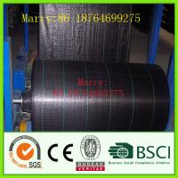 Buy cheap pp woven ground cover fabric for agriculture from wholesalers